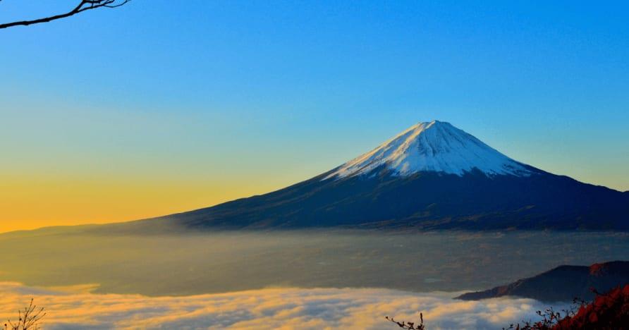 Japonsko považuje srážkové daně z cizince výhry