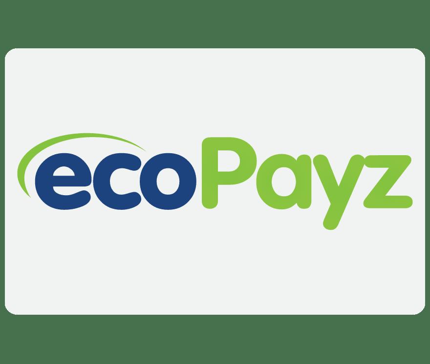 Top 52 EcoPayz Online Kasinos 2021 -Low Fee Deposits