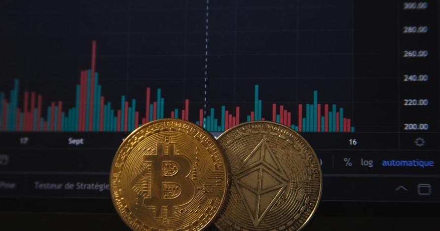 Bitcoinové hazardní hry se zvýší po nedávném oznámení PayPal